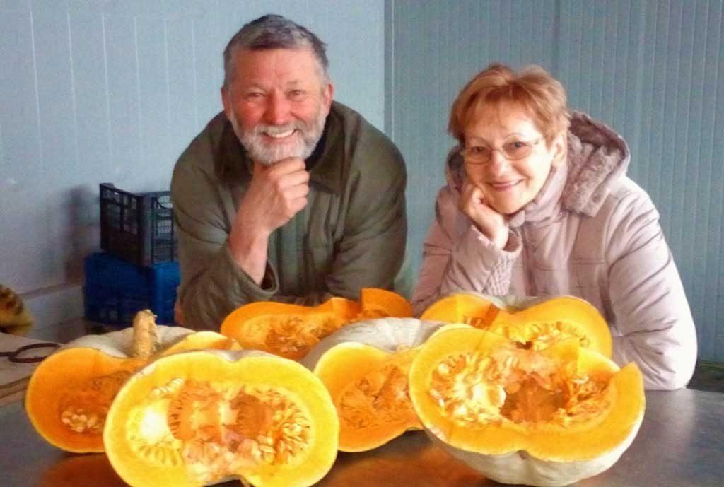 Nagydobosi sütőtök őstermelő Filep család